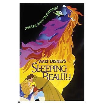 Walt Disney Sleeping Beauty Poster Poster Print