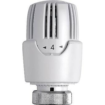 Eberle RT414 Thermostitc radiatore valvola meccanica 7 fino a 31 ° C