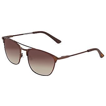 Breed Zodiac Titanium Polarized Sunglasses - Brown/Brown