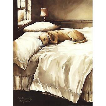 Een honden leven Poster Print by John Rossini (12 x 16)