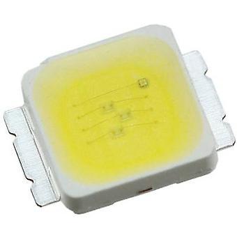 CREE HighPower LED Cold white 2 W 104 lm 120 ° 3.7 V 500 mA