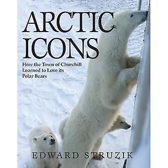 Arctic Icons: How the Town of Churchill Learned to Love Its Polar Bears