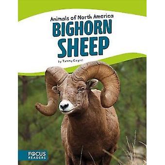 Bighorn Sheep by Tammy Gagne - 9781635170320 Book