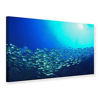Canvas Print Shoal Of Fish