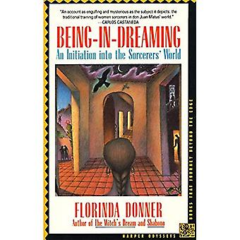 Being in Dreaming: Initiation into the Sorcerer's World (Harper Odyssey)