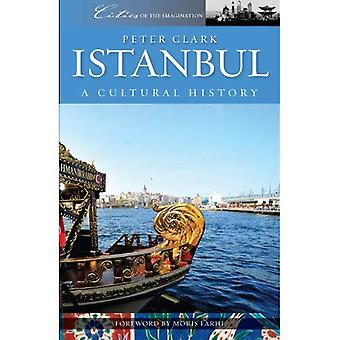 Istanbul: A Cultural and Literary History