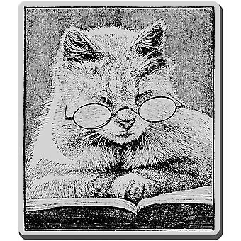 Stampendous Cling Rubber Stamp Cattus Librum Crv239