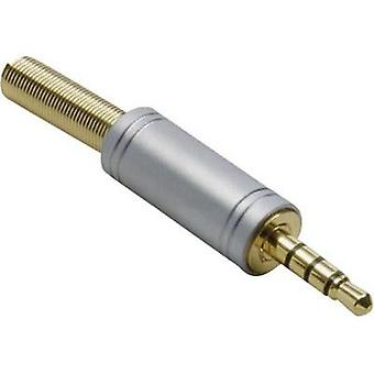 3.5 mm audio jack Plug, straight Number of pins: 4 Stereo Gold BKL Electronic 1103088 1 pc(s)