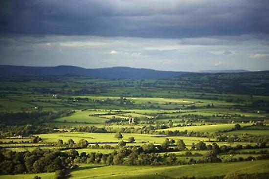 Pastoral Fields Near Clonea County Waterford Ireland Poster Print by Panoramic Images (36 x 24)