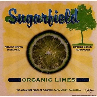 Sugarfield limefrukter affisch Skriv av John Jones (12 x 12)