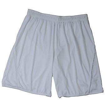 James and Nicholson Childrens/Kids Team Shorts