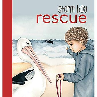 Libro di bordo tempesta BOY RESCUE