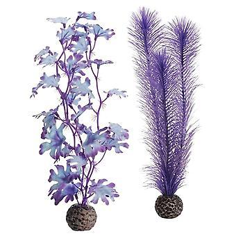 BiOrb Purple Kelp-Medium
