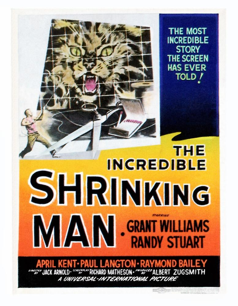 https://img-3.fruugo.com/product/4/90/14570904_max.jpg Incredible Shrinking Man Poster