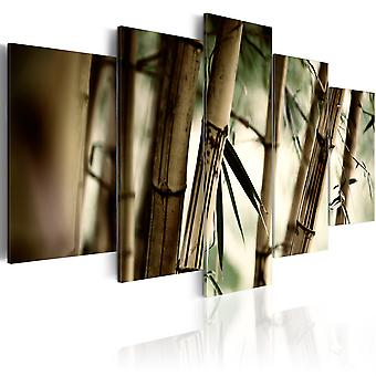 Tableau - Forêts de bambous