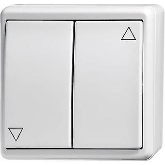 Wall-mount switch Flush mount Kaiser Nienhaus 321112