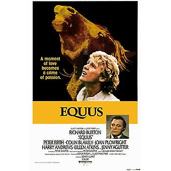 Equus Movie Poster (11 x 17)