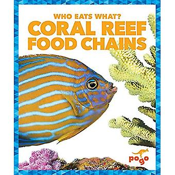 Coral Reef Food Chains (Who Eats What?)