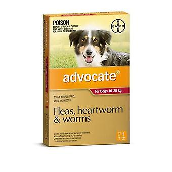 Advocate 1 Pack Large Dogs 10-25kg