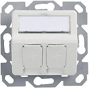 Network outlet Flush mount Insert with main panel Unequipped 2 ports Telegärtner Alpine white