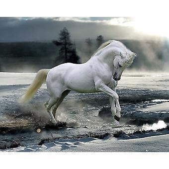 Affichette de neige Bob Langrish cheval
