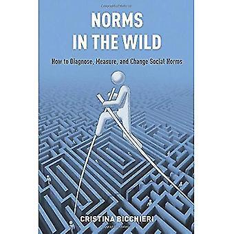 Normien luonnossa: Miten diagnosoida, toimenpide, ja muuttaa sosiaalisten normien