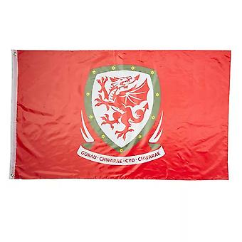 2018-19 Wales Football Flag