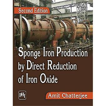 Sponge Iron Production by Direct Reduction of Iron Oxide - Aphi - MIT