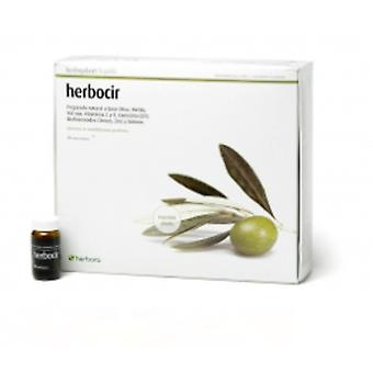 Herbora Cirven Herb Circulation 20 ampoules