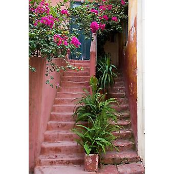 Colorful Stairways Chania Crete Greece Poster Print by Darrell Gulin