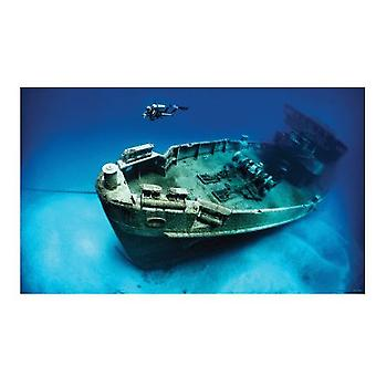 Sandimas Vinyl Poster 61X40 cm Wreck (Fish , Decoration , Backgrounds)