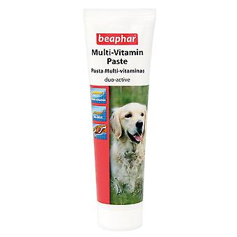 BEAPHAR DOG MULTI-VITAMIN PASTE 100g