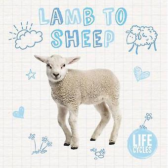 Lamb to Sheep by Holly Duhig - 9781786371461 Book