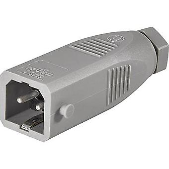 Mains connector STAS Series (mains connectors) STAS Plug, straight Total number of pins: 2 + PE 16 A Grey Hirschmann STAS 2 1 pc(s)