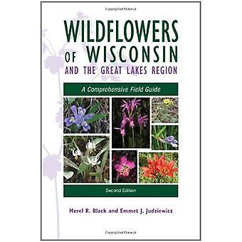 Wildflowers av Wisconsin och de stora sjöarna: en omfattande Fälthandbok