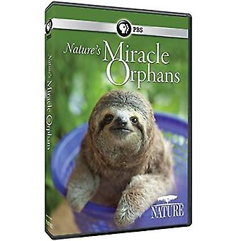 Nature: Nature's Miracle Orphans [DVD] USA import