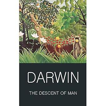 The Descent of Man (Wordsworth Classics of World Literature)