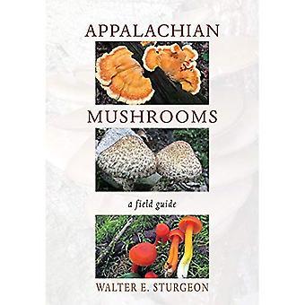Appalachian Pilze: A Field Guide