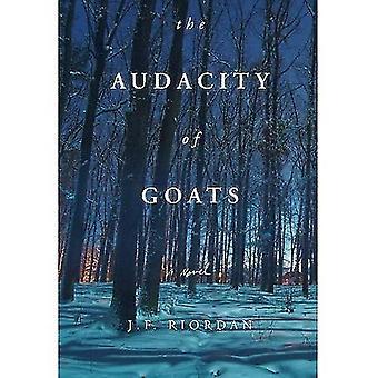 Audacity of Goats: A Novel