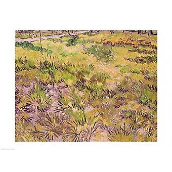 Wiese mit Schmetterlingen 1890 Poster Print von Vincent Van Gogh (24 x 18)