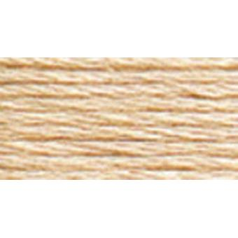 Anchor 6-Strand Embroidery Floss 8.75Yd-Copper Light