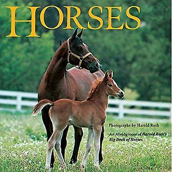Horses (Grosset & Dunlap All Aboard Book)