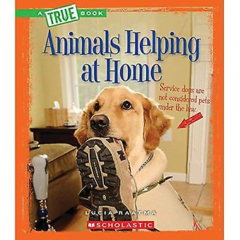 Djur som hjälper hemma (sanna böcker)