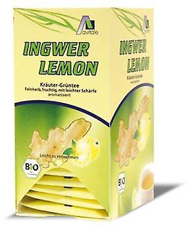 Madal Bal Ginger Lemon With Green Tea Infusions 20 Sachets (Herbalist's , Infusions)