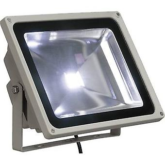 SLV Neutralvit 231121 LED outdoor floodlight 50 W Neutral white Silver-grey
