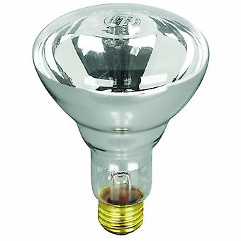 APC APC12100M5 100W 12V R30 Pool and Spa Flood Reflector Bulb