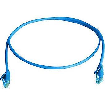 Telegärtner RJ45 Networks Cable CAT 6 U/UTP 1 m Sky blue Flame-retardant, Halogen-free