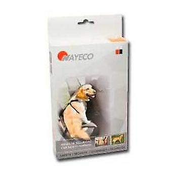 Nayeco Dog safety harness drive S (Dogs , Transport & Travel , Travel & Car Accessories)