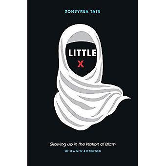 X: peu grandir dans la Nation de l'Islam
