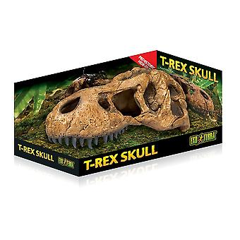 Exo Terra T-Rex teschio-medium
